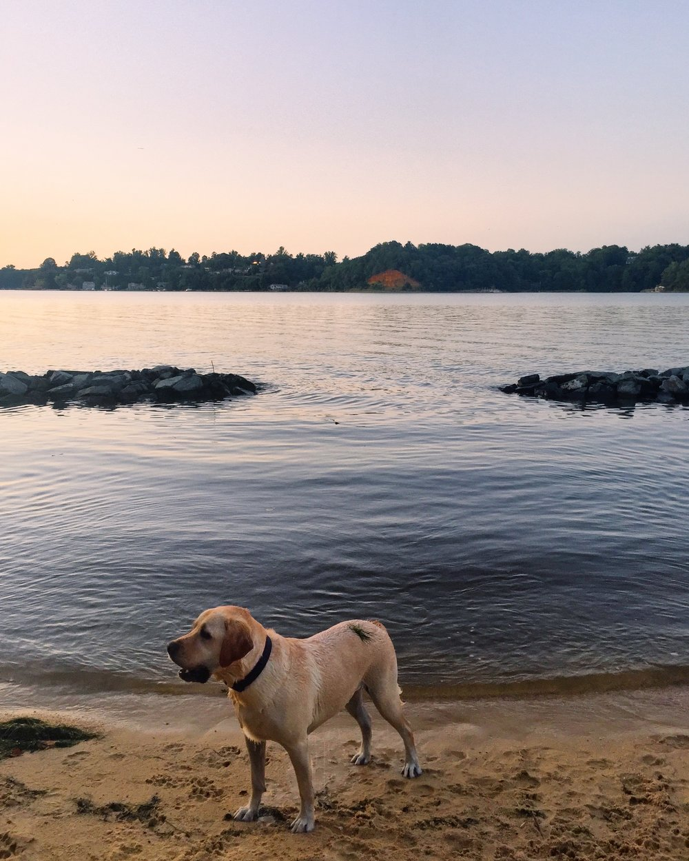 otis-severn-river-maryland.JPG