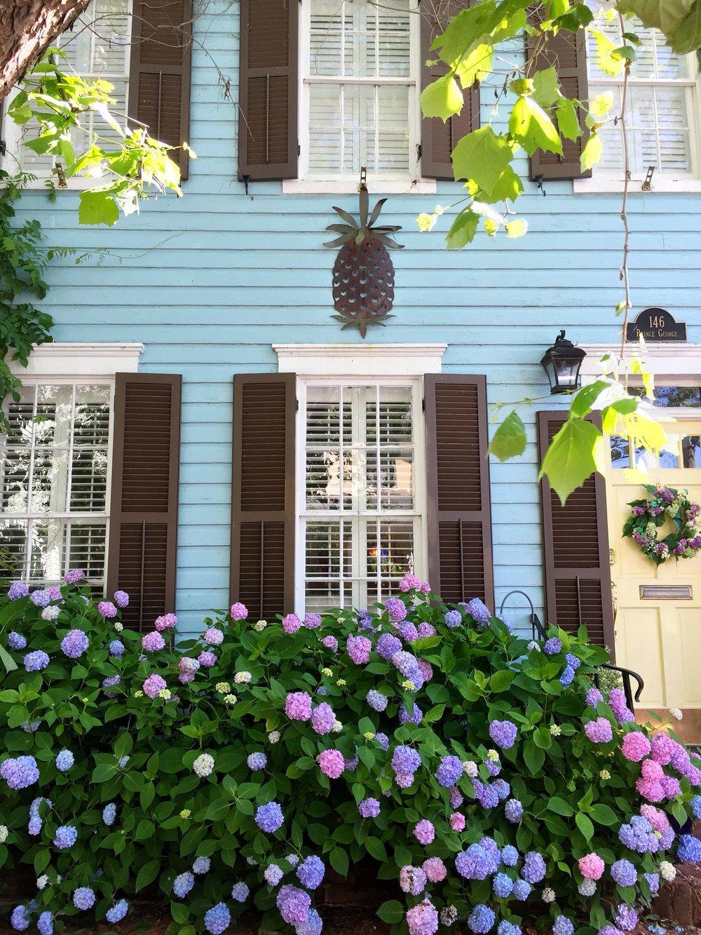 prince-george-street-annapolis.JPG