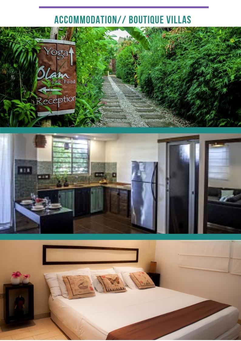 BOHO ADVENTURE COSTA RICA REWILDING EXPERIENCE (4).jpg