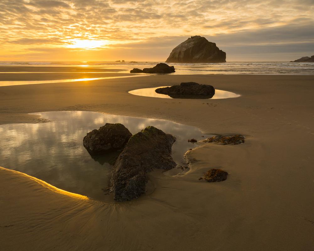 Bandon Coast,    Oregon,    Bandon,    USA