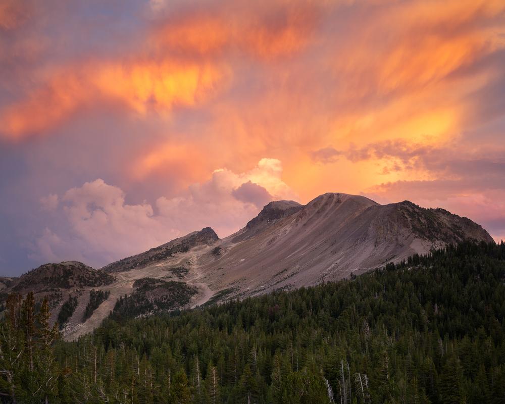 Mono Lake State Natural Preserve, California, USA