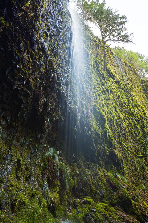Columbia River Gorge Area,Oregon,USA