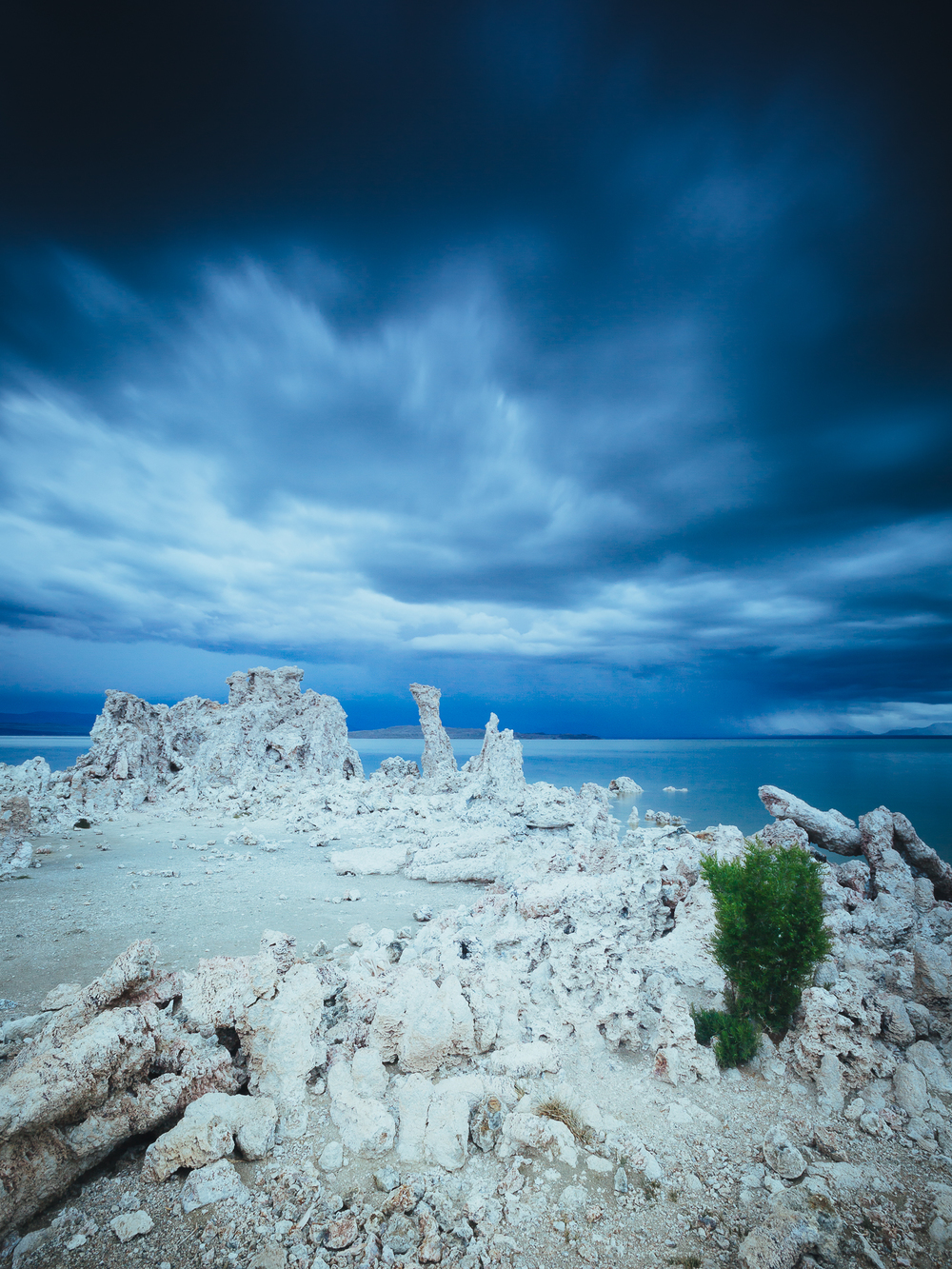 Mono Lake Recreation Area,     California,     USA