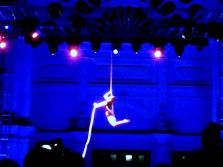 Circus acts like this silks performer lit up Carlton Gardens.