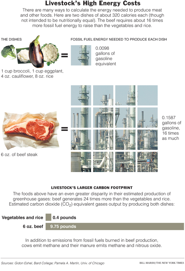This infographic, originally published in the New York Times, equates 320 calories of beef vs. vegetables, which shows a difference of 16x more gasoline equivalent energy to produce the beef. When recalculated on an ounce-by-ounce basis, the amount of energy required to make 1oz of beef is approximately 58x more than it takes to produce 1oz of the vegetables/grains depicted above.