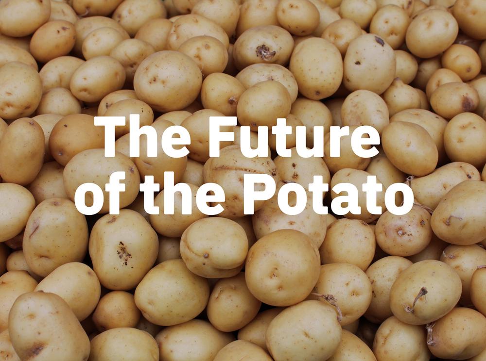 potatoOfTheFuture.png