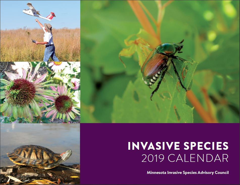 MISAC Invasive Species 2019 Calendar.JPG