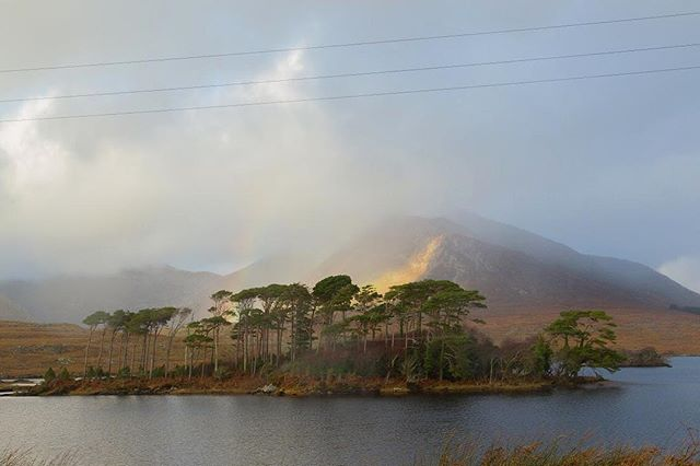 Cue the unicorns. #Connemara🌈 🦄