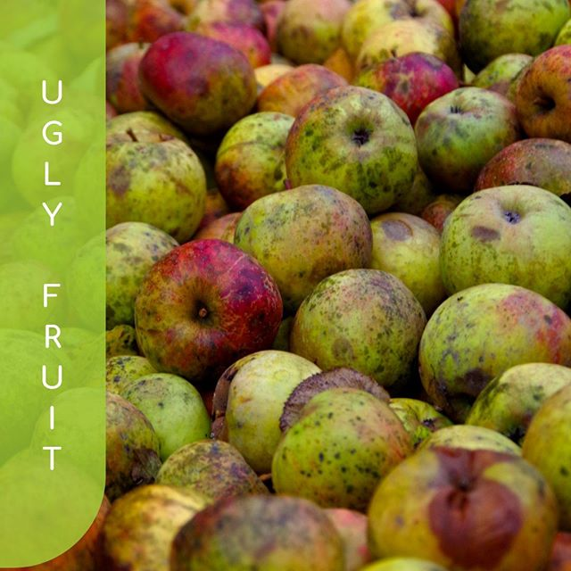 Ugly fruit, not seen or heard.  _ Those bits of fruit who have the same amount of resources invested in them, only to be turned away by the Supermarkets because they don't meet our aesthetic expectations. _ They may be a little out of shape and have few bumps and bruises, but they're still the same on the inside. Beautiful and nutritious. _ As we've mentioned @harrisfarmmarkets are making waves on this front, along with @boost_juice  who use the ugly ones in their juices.  _ Hit your local juicer today to knock that hangover on the head early 😂 . . . . . . . #ufoodi #smoothie #healthyfood #veggies #plantbased #healthy #vegan #vegetarian #juicecleanse #fruits #fruitlover #smoothies #juicing #fruit #detox #juice