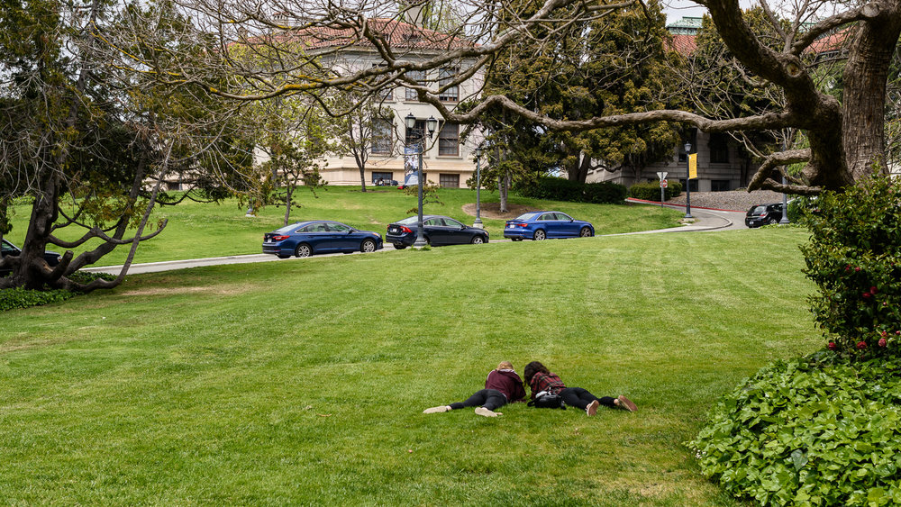 Revising together, Berkeley Campus