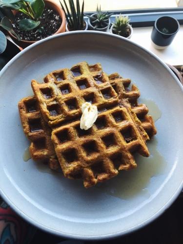 pumpkin spice gluten free vegan protein waffle