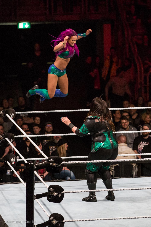 2017_02_22_WWE_DUS-11.jpg