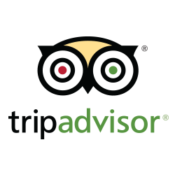 trip-advisor copy.png