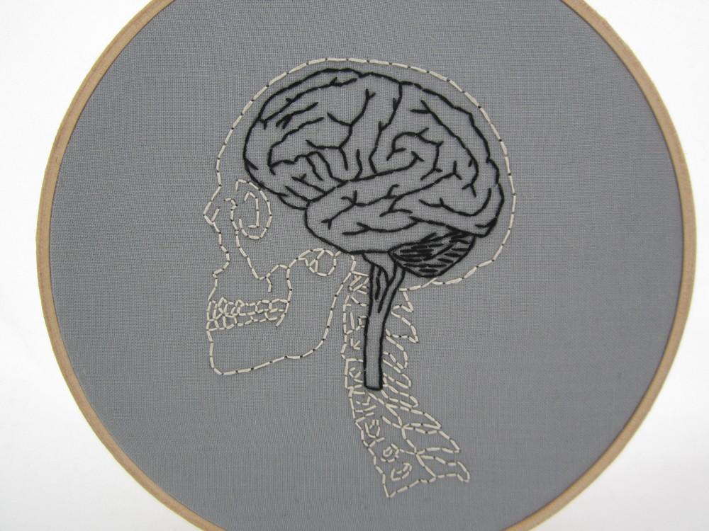 Brain, Sc, Skull 2.JPG