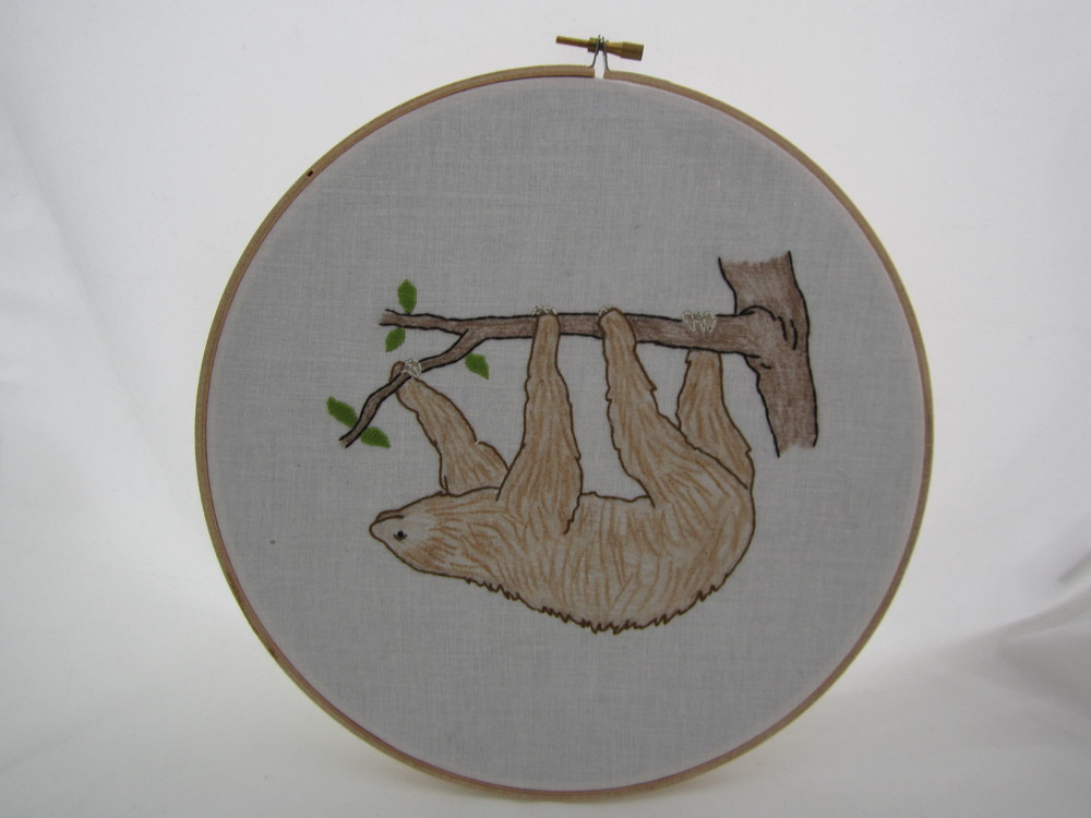 Sloth 5182016 1.JPG
