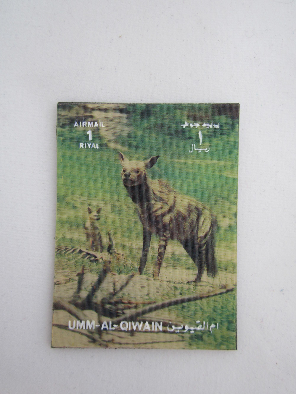 3D Hyena Magnet 3.JPG