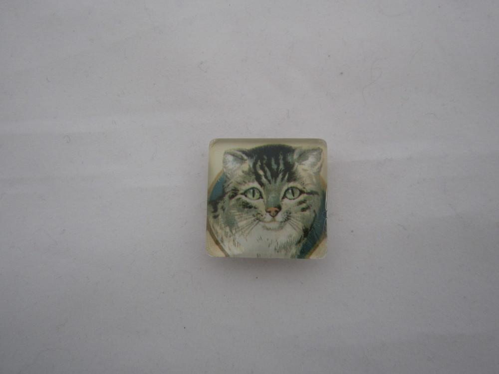 Cat Magnet 3.JPG