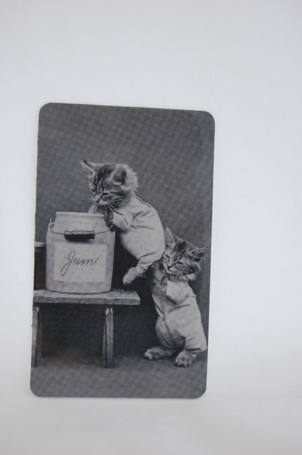 Kitten Jam Magnet 1.JPG