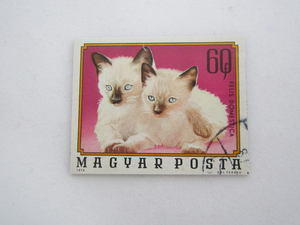 Siamese Stamp Magnet 2.JPG