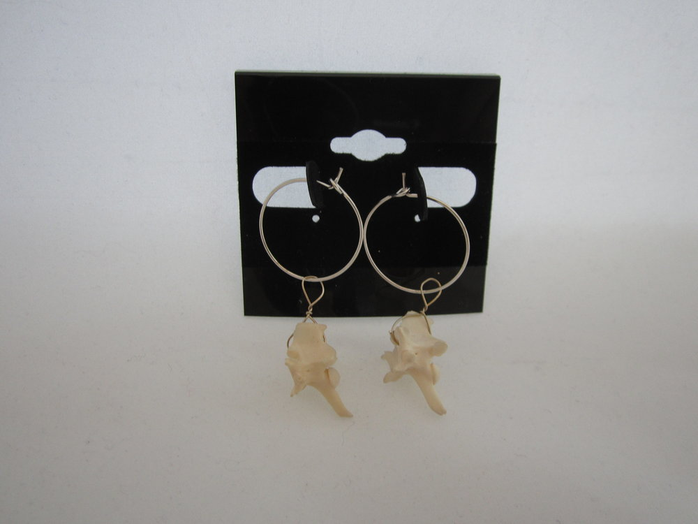 Rattlesnake Vertebrae Earrings 2.JPG