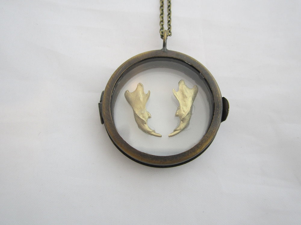 Gold Rat Jaws Shadowbox Pendant 3.JPG