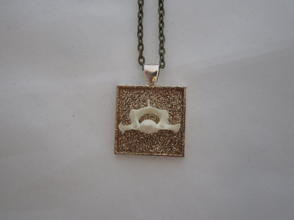 Jack Rabbit Vertebra on Glitter Pendant 3.JPG