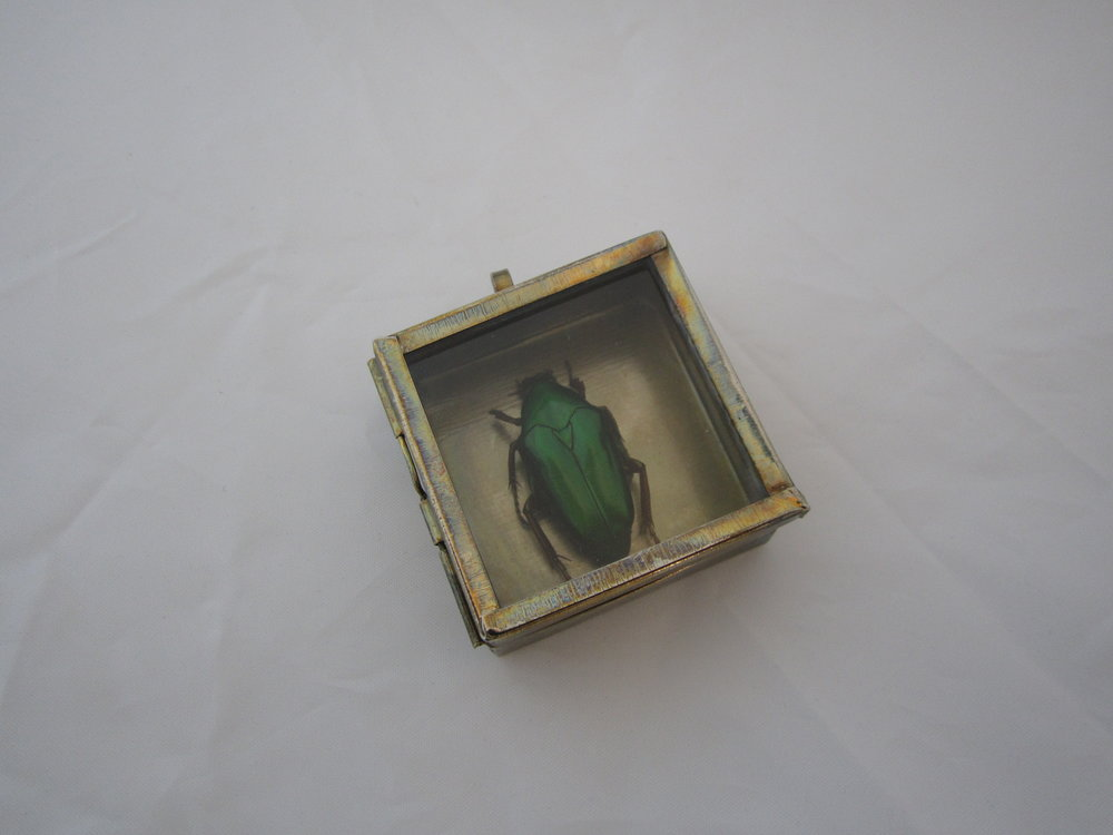 Green Beetle Shadowbox 742016 5.JPG