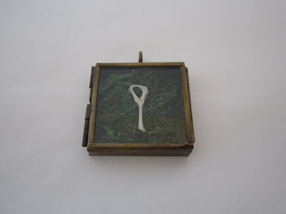 Rodent Bone on Moss in Square Locket 5.JPG