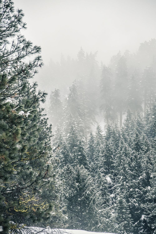 High Rockies, CO