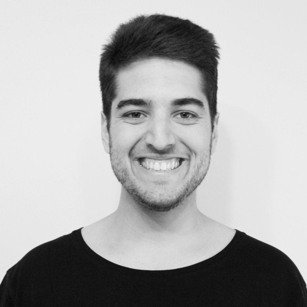Renaud Vincent - Software Developer