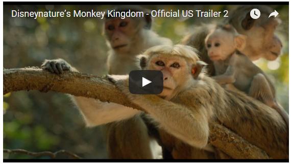 Disney's Monkey Kingdom Trailer #MonkeyKingdom, — Local fun