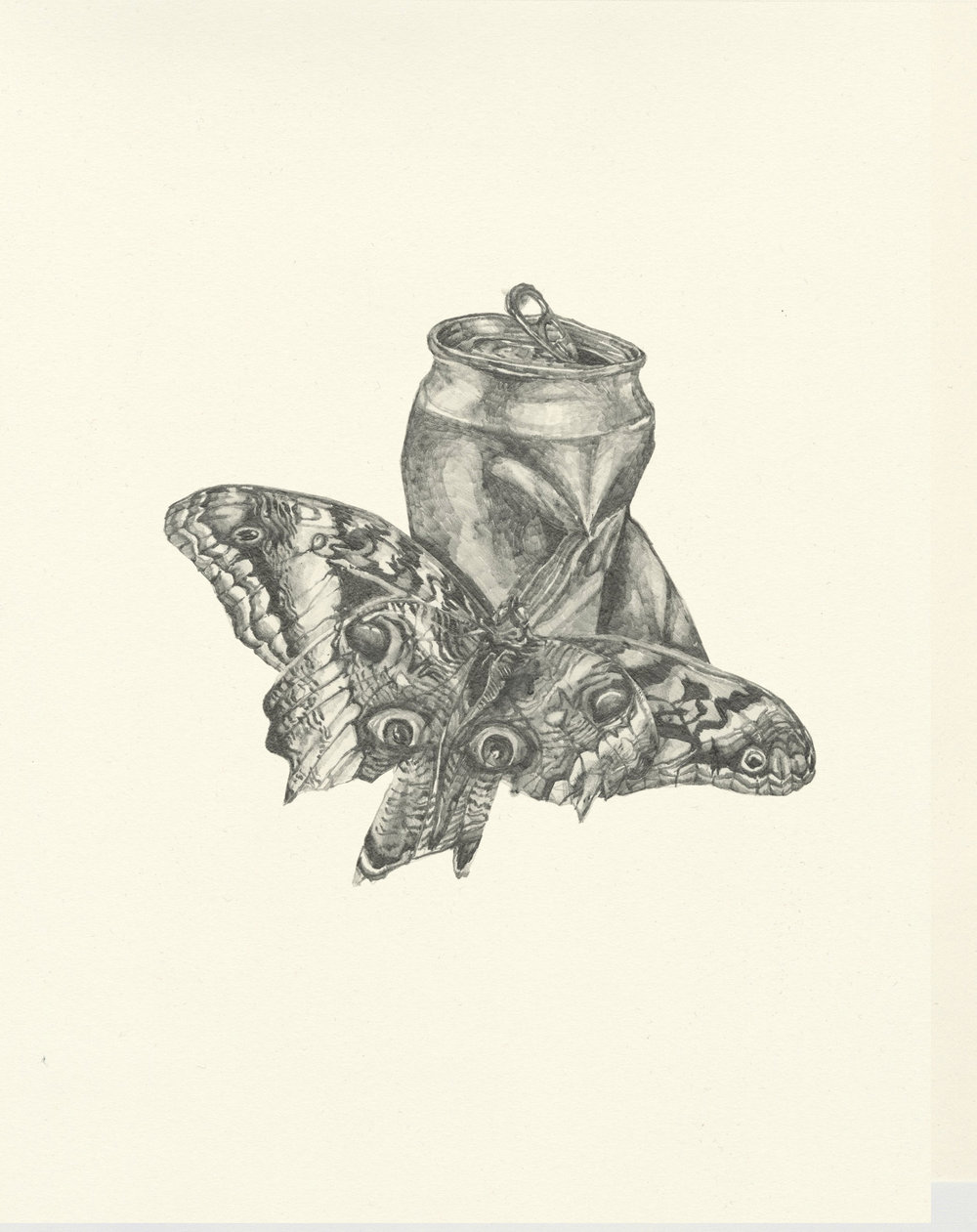 My Boyfriend is a Peacekeeper xi  | graphite on paper | 9.5INx12IN   Excerpt from My Boyfriend is a Peacekeeper Book:  I found that it felt even more empty so I was happy at first when two owl moths took shelter in its newly exposed cavity. The creatures were enormous, but comfortable, and had these eyes that stared at you a violent intensity, like a mad Courbet.