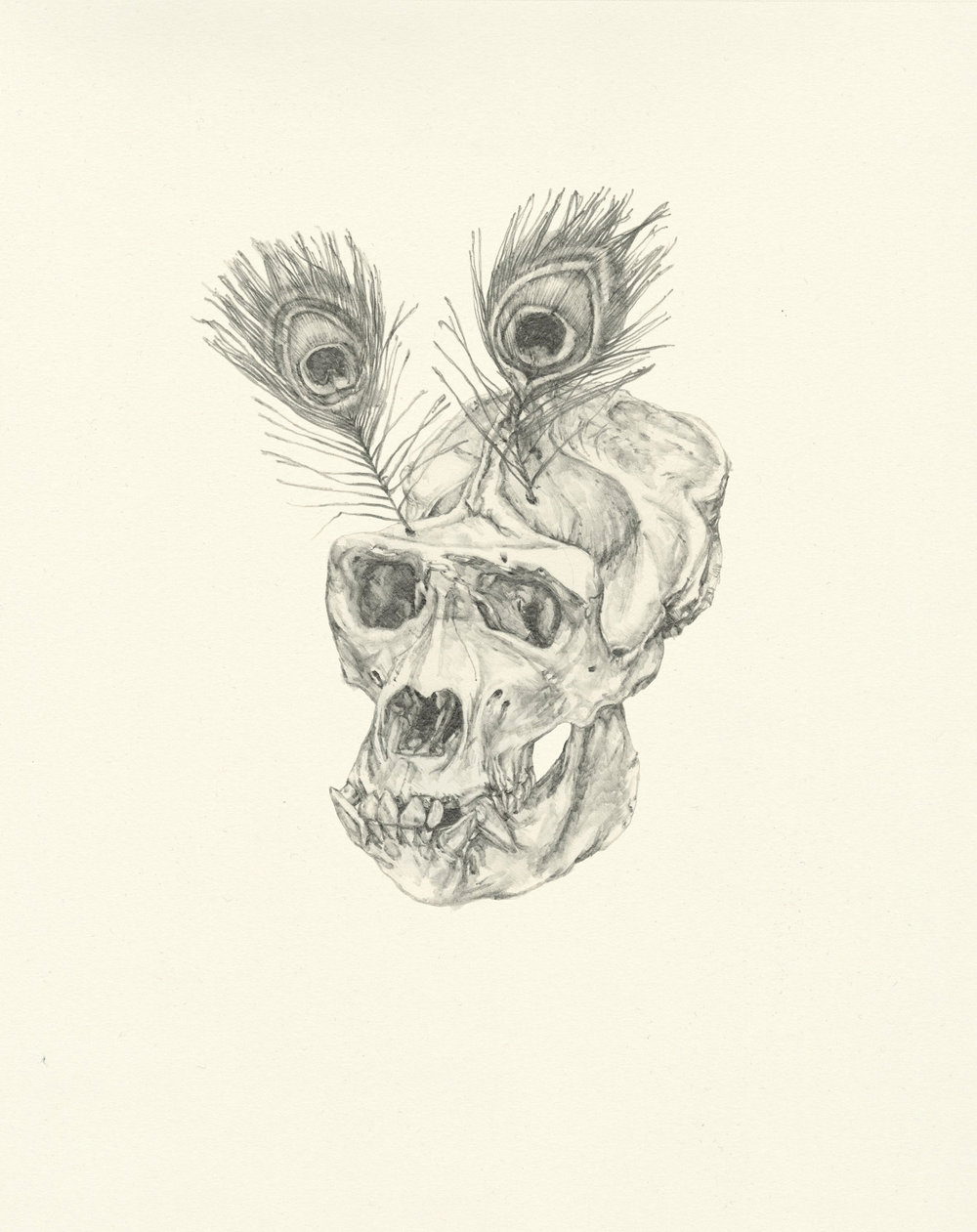 My Boyfriend is a Peacekeeper i  | graphite on paper | 9.5INx12IN   Excerpt from My Boyfriend is a Peacekeeper Book:  I held it in my hand, a former bump in the road....The eye hollows were so deep and unsettling that eventually I gave it new eyes as a distraction. I thought that you would appreciate the humour.