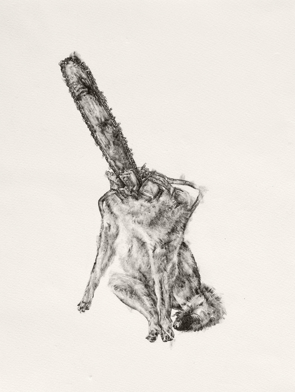 "Dog, Chainsaw | graphite | 11""x15"" 