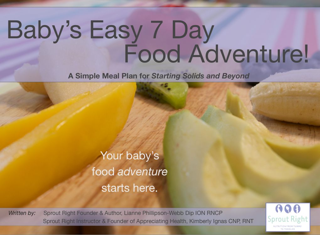 7-Day Meal Plan: Baby's Easy 7-Day Food Adventure