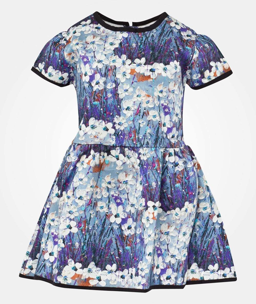 Livly Sandy Dress Painted Garden.jpg