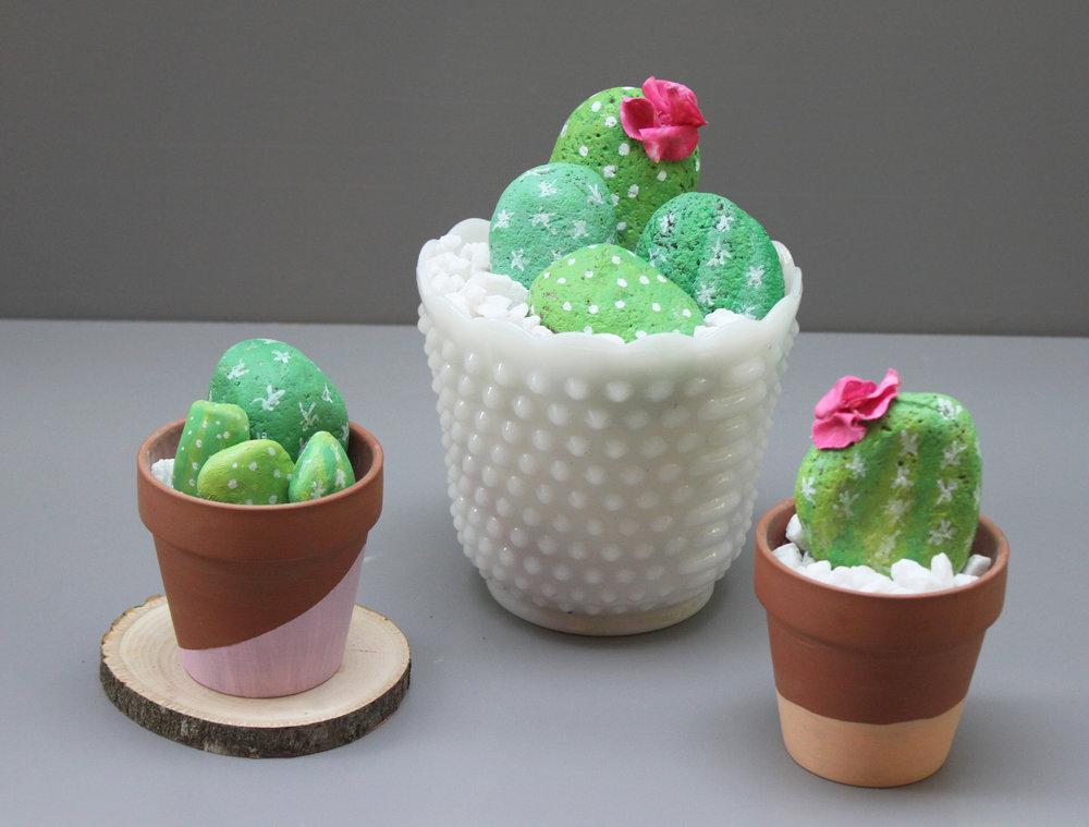 CactusRocks-AudreyKuether.jpg