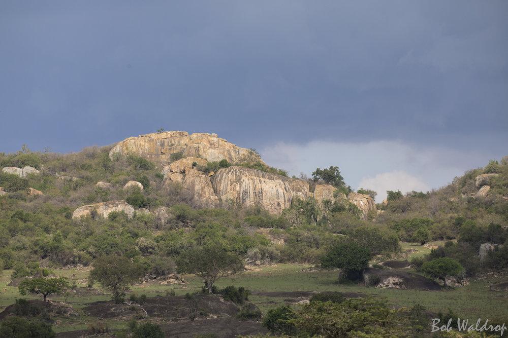 Serengeti-7334.JPG