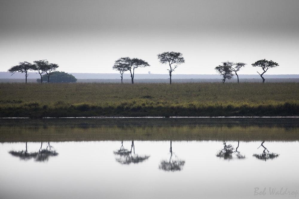 Serengeti-8025.JPG
