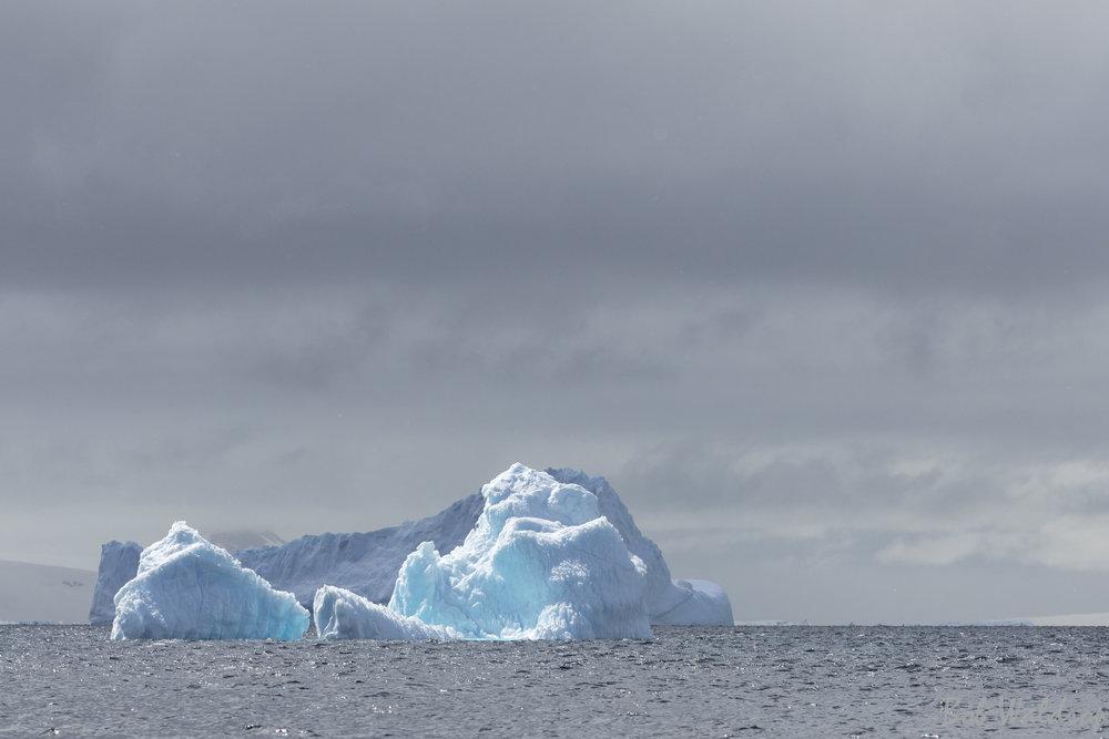 Antarctica-5070.JPG