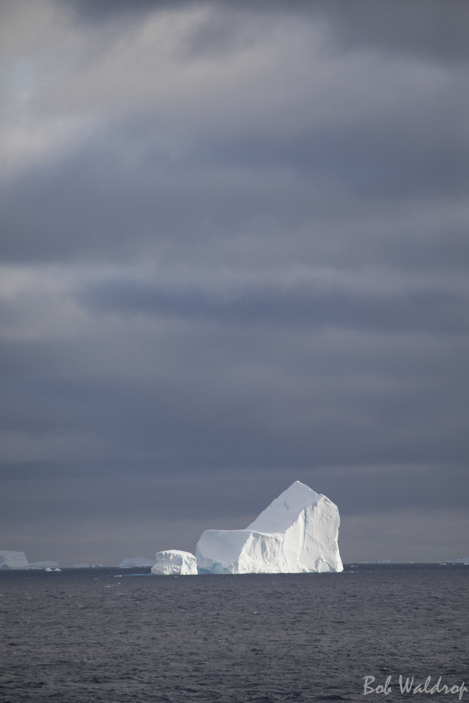 Antarctica-4644.JPG