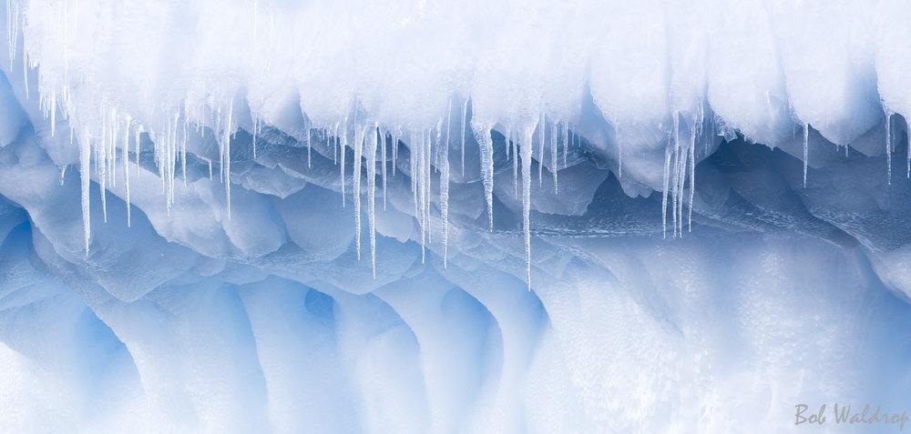 Antarctica-6412.JPG