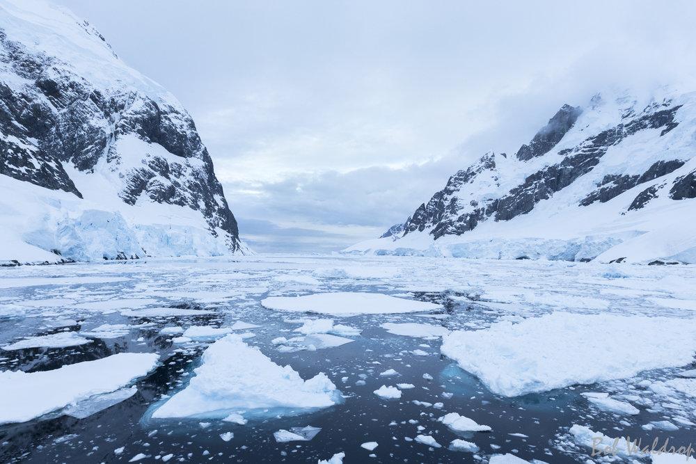 Antarctica-7274-2.JPG