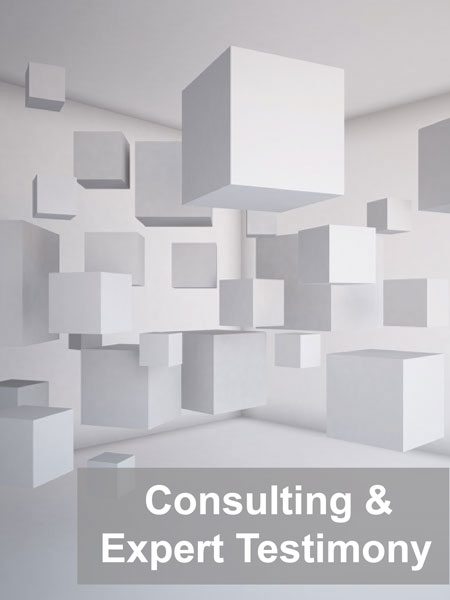 Consulting and Expert Testimony