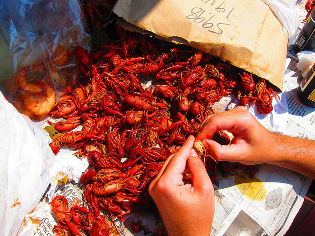 Crawfish in New Orleans |  Source: Flicker