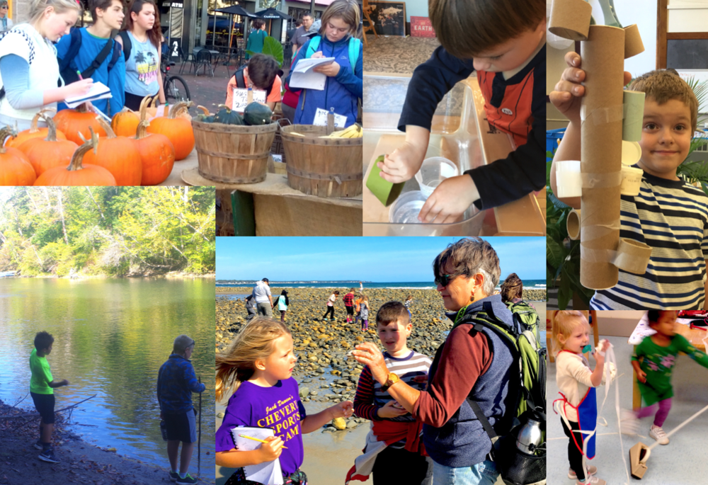 What do food systems, buoyancy, inventors, rivers, biomes and tape dispensers all have in common? Showcase Days!