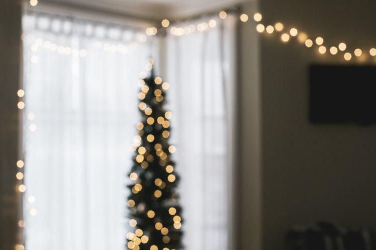 christmas rest 1.jpg