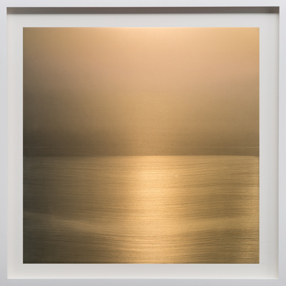 """Gold, 2018, 36""""sq. print size/ 37""""sq. frame size, Archival pigment print on acid free rag paper (stamped/numbered), framed in classic white wood frame. Edition of 50.  $3,100 unframed / $3,500 framed"""
