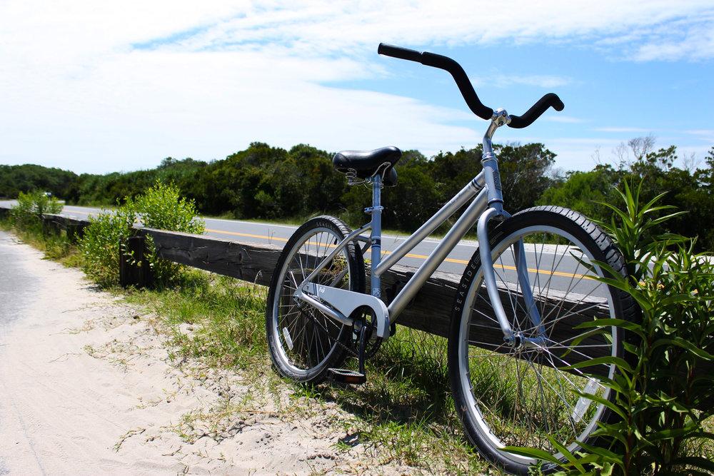 Assateague Island bike trail