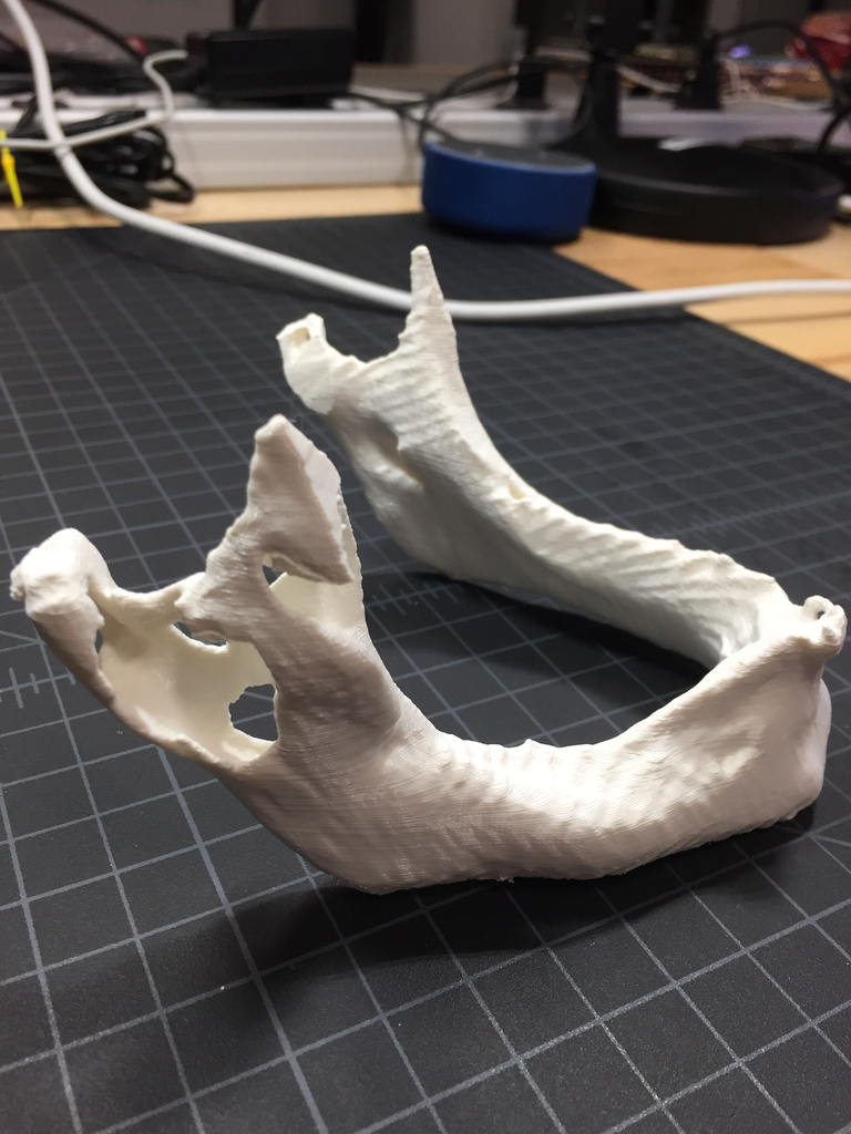 A printed and cleaned model